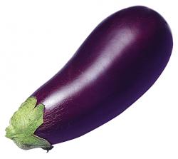 Eggplant clipart vegitable