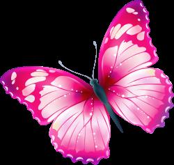 Papillon clipart rainbow butterfly