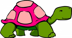 Tortoise clipart transparent