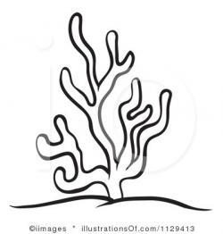 Drawn coral