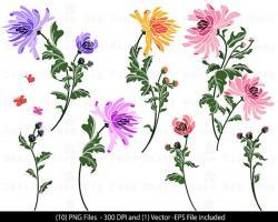 Chrysanthemum clipart purple floral