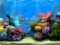 Coral Reef clipart sea bottom