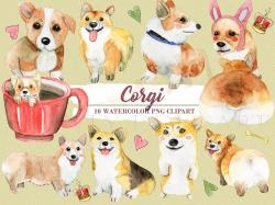 Corgi  clipart cute pet