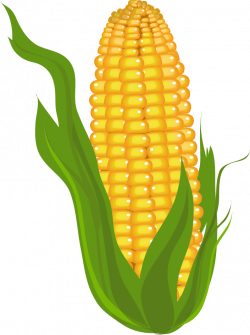 Vegetables clipart yellow corn