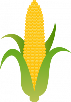 Vegetable clipart yellow corn