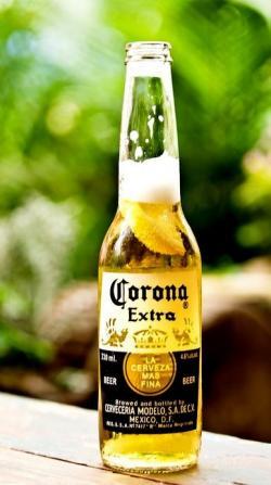 Corona Extra clipart lemon