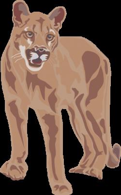 Puma clipart animal