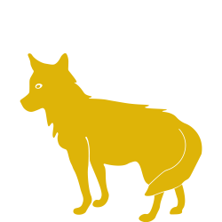 Coyote clipart land animal