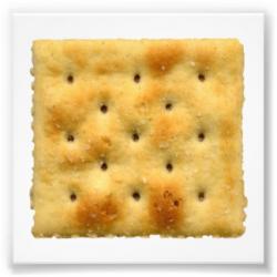 Cracker clipart saltine cracker