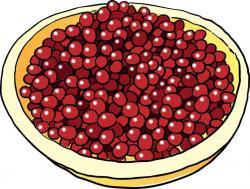 Cranberry Relish clipart cartoon