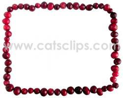 Cranberry clipart border