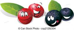 Blueberry clipart cranberry