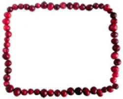 Cranberry clipart garland