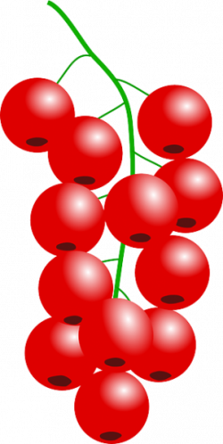 Cranberry clipart red