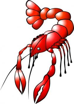 Crawfish clipart vector