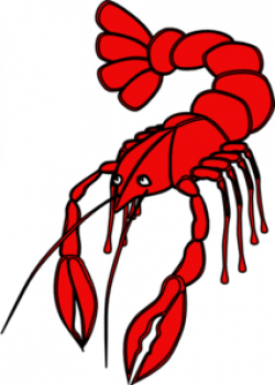 Crawfish clipart crayfish