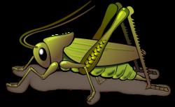 Cicada clipart cute