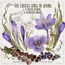 Crocus clipart springtime