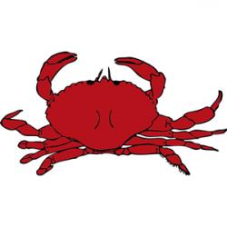 Crustacean clipart crab