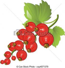 Currants clipart vector