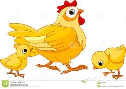 Chick clipart hen