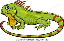 Green Iguana clipart iguana