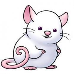 Possum clipart cute