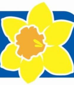 Daffodil clipart cancer