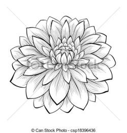 Dahlia clipart beautiful flower