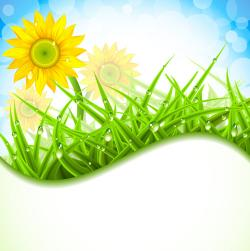 Camomile clipart spring grass
