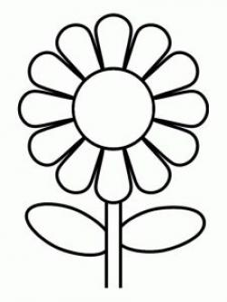 Amd clipart sunflower