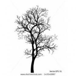Drawn dead tree whimsical
