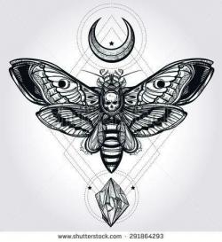 Deaths Head Moth clipart dead head