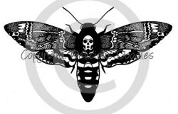 Deaths Head Moth clipart death head