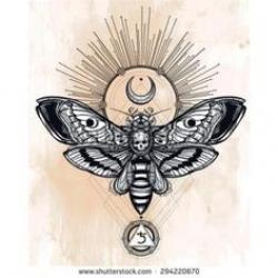 Deaths Head Moth clipart moon