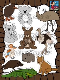 Kangaroo clipart wombat