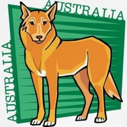 Dingo clipart domestic