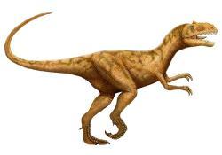 Fossil clipart allosaurus