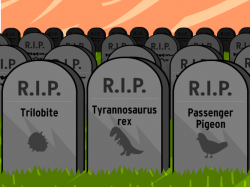 Extinct clipart extinction