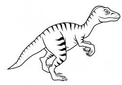Drawn velociraptor