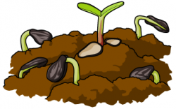 Seeds clipart pile soil