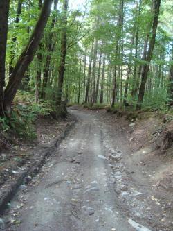 Dirt Road clipart rode