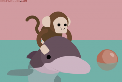 Ride clipart dolphin