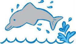 Dolphin clipart splash