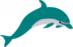 Dolphin clipart teal