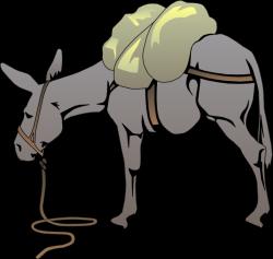 Sick clipart donkey