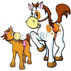 Foal clipart cute