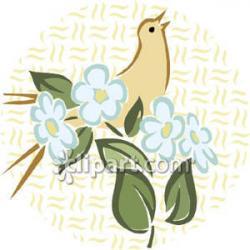 Turtle Dove clipart sympathy flower