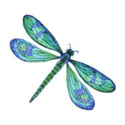 Colorful clipart dragonfly
