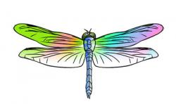 Colouful clipart dragonfly